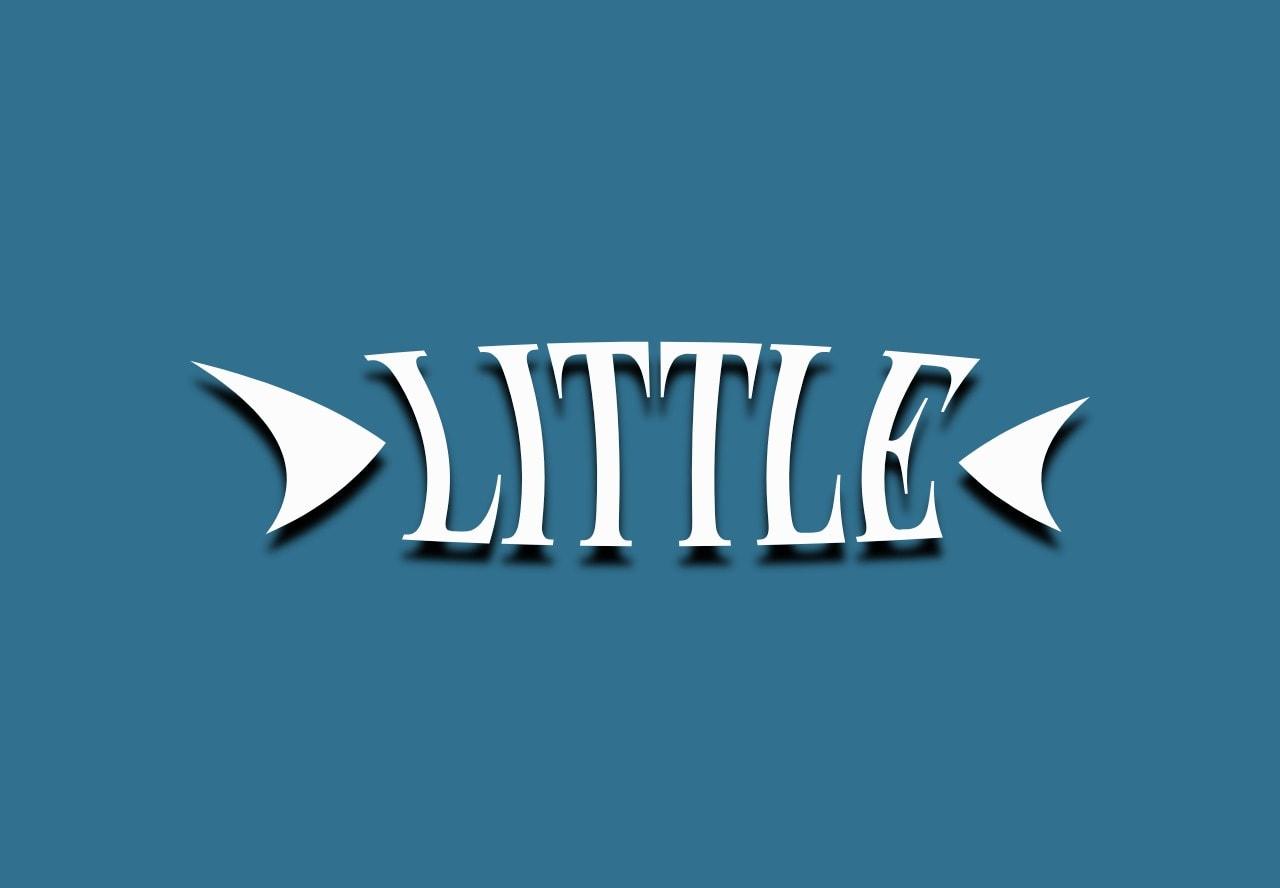 Little im Lifetime deal shorten, target, track and analyze links