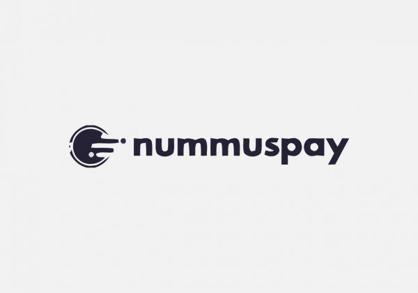 Nummspay lifetime deal payment management records